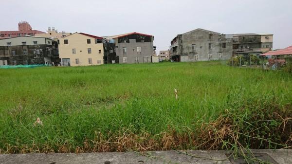 柳營市區方正建地