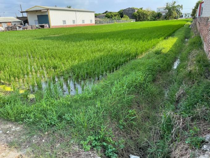 新港東里內完美農地